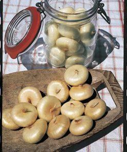 produzione semi cipolla a tunica gialla borettana