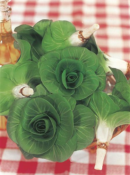produzione semi cicoria grumolo verde