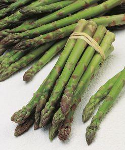 produzione semi asparago mary washington